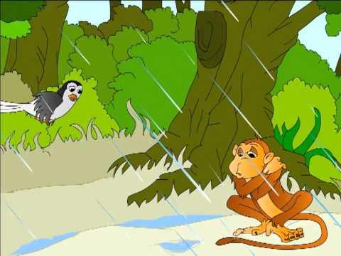 monkey_0