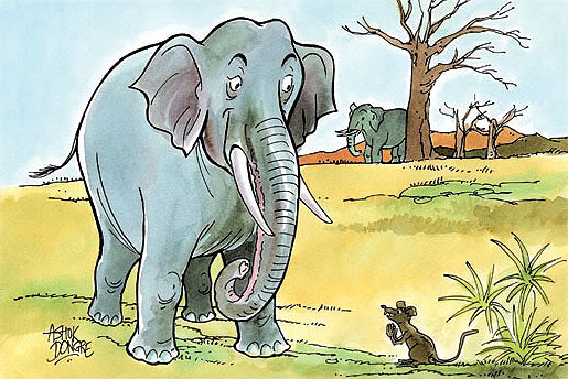 the-mouse-and-big-elephants