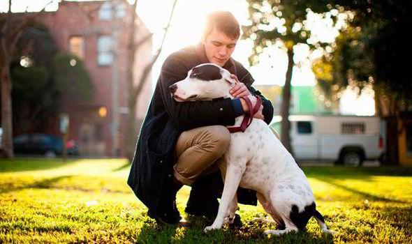 human-barks-dogs-452769