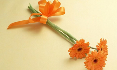 orange-flowers-gift