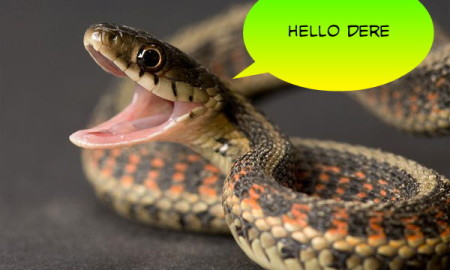 user-completed-image-hold-a-snake-2016-02-22-01-00-38-0