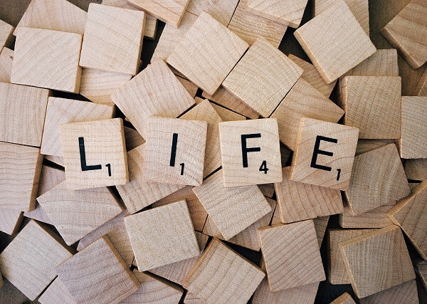 LIFE (1)