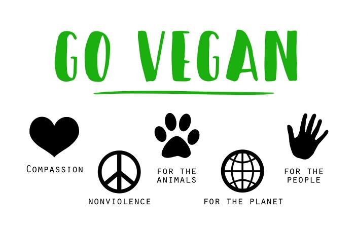 vegan-1343429-960-720_2_orig