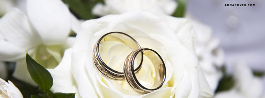 16399-wedding-rings-and-flowers