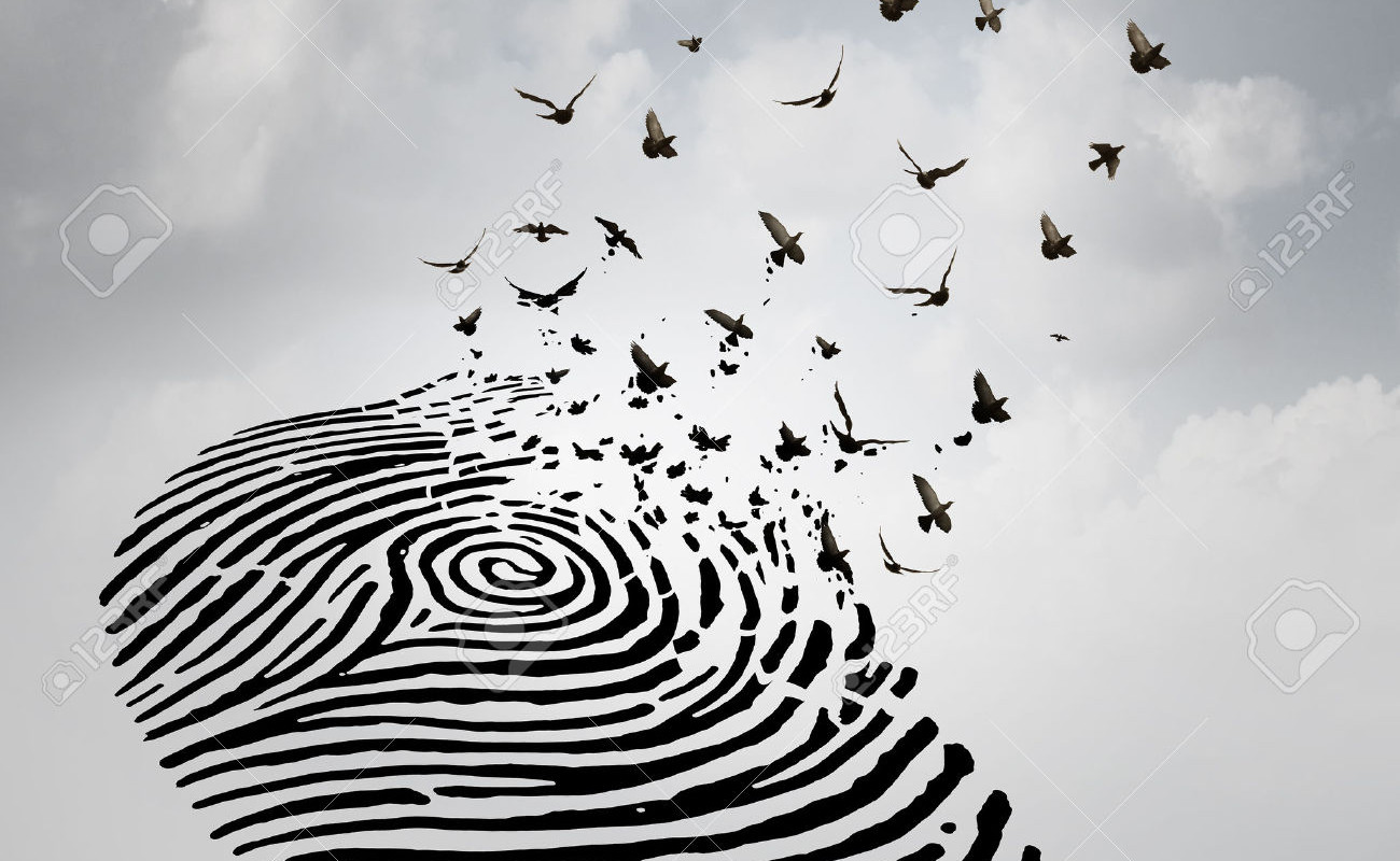 48270074-Identity-freedom-concept-as-a-fingerprint-transforming-into-flying--Stock-Photo