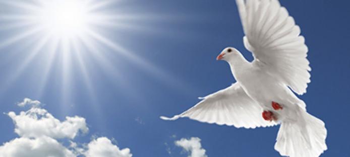 world-peace-day-2