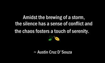 Austin Cruz D'Souza